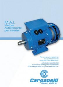 Inverter Brake Motor