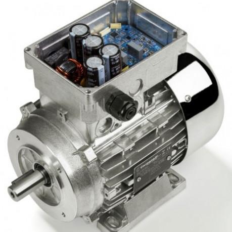 Alfavert Motor