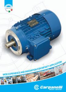 Electric Motors Brochure